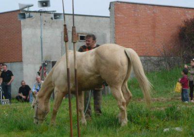 Lodi 2008-043
