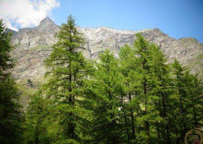2016.07.30 Lughnasad (TT) Valle d'Aosta 08