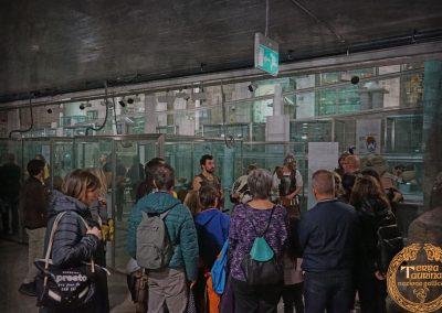 2019.11.01 Trinvxtion Samoni presso Museo di Antichità di Torino_FB_16